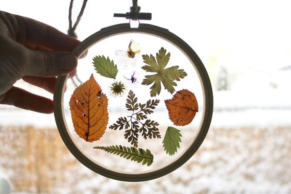 pressed natural leaves and flowers in a hoop